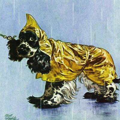 """Butch in Raingear,"" April 2, 1949-Albert Staehle-Giclee Print"