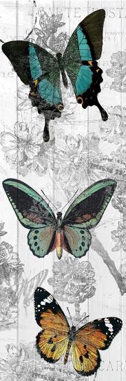 Butterflies Are Free 2-Kimberly Allen-Art Print
