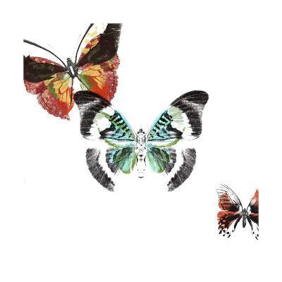 Butterflies Dance III-A. Project-Art Print