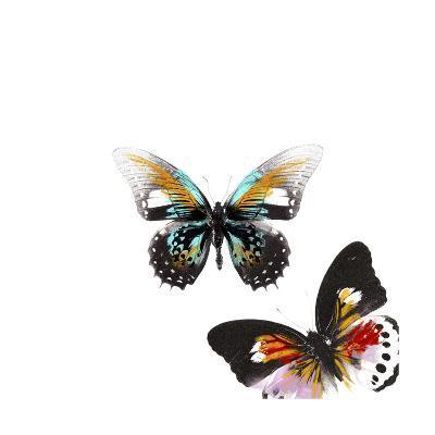 Butterflies Dance VI-A. Project-Art Print