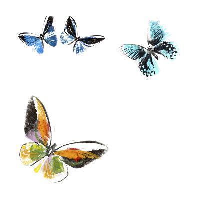 Butterflies Dance VII-A. Project-Art Print