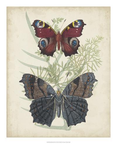 Butterflies & Ferns III-Vision Studio-Giclee Print