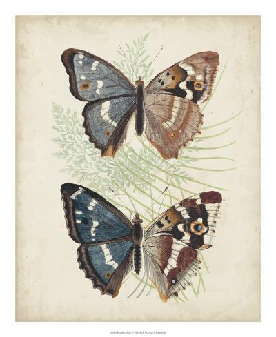 Butterflies & Ferns IV-Vision Studio-Giclee Print