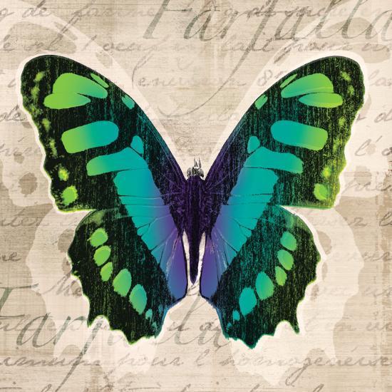 Butterflies II-Tandi Venter-Art Print