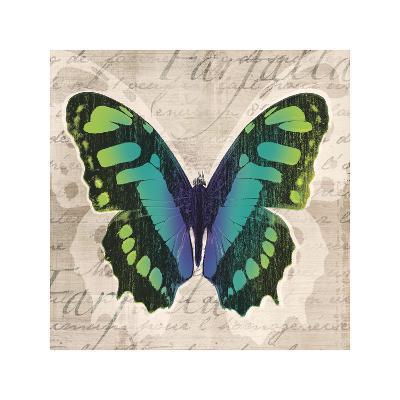 Butterflies II-Tandi Venter-Giclee Print
