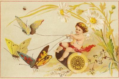 Butterflies Pulling Cherub on Thread Spool Chariot--Giclee Print
