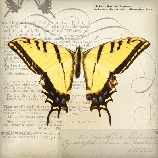 Butterflies Script V-Amy Melious-Premium Giclee Print