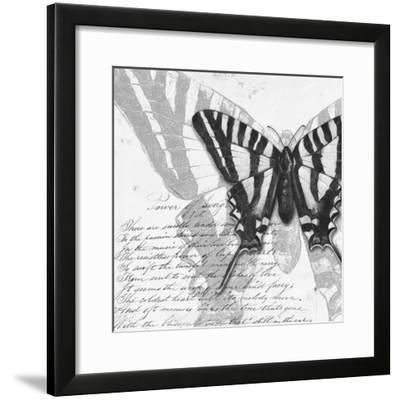 Butterflies Studies II-Patricia Pinto-Framed Premium Giclee Print