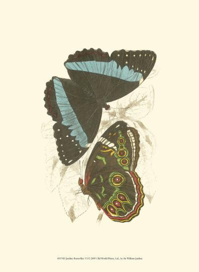 Butterflies VI-Sir William Jardine-Art Print