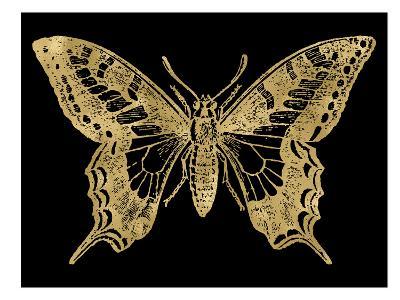 Butterfly 2 Golden Black-Amy Brinkman-Art Print