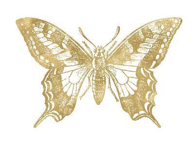 Butterfly 2 Golden White-Amy Brinkman-Art Print