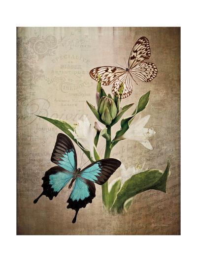 Butterfly Botanical II-Debra Van Swearingen-Art Print