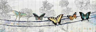 Butterfly Day-Kimberly Allen-Art Print