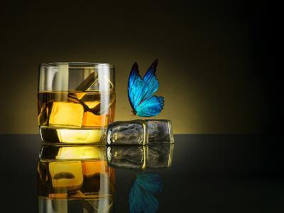 Butterfly Drink-Jackson Carvalho-Photographic Print