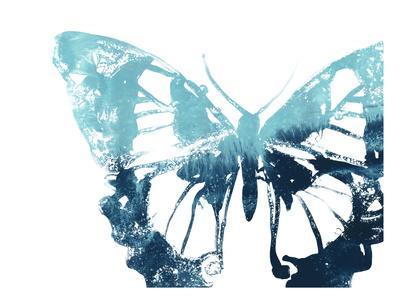 https://imgc.artprintimages.com/img/print/butterfly-imprint-i_u-l-q1gwco20.jpg?p=0