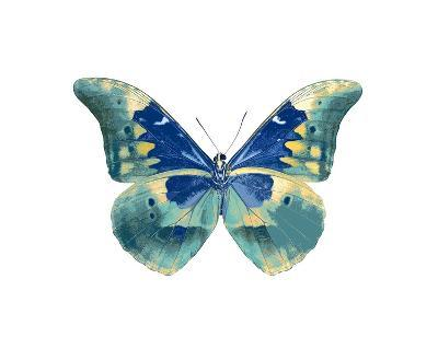 Butterfly in Aqua I-Julia Bosco-Giclee Print