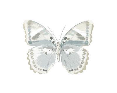 Butterfly in Mandarin-Julia Bosco-Giclee Print