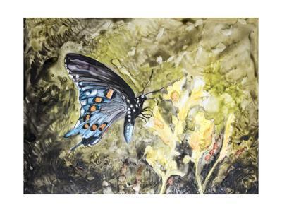 https://imgc.artprintimages.com/img/print/butterfly-in-nature-i_u-l-q11kjc60.jpg?p=0
