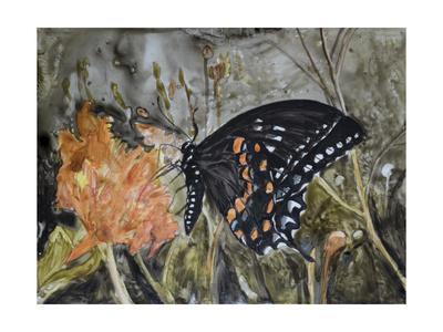 https://imgc.artprintimages.com/img/print/butterfly-in-nature-iv_u-l-q11kje80.jpg?p=0