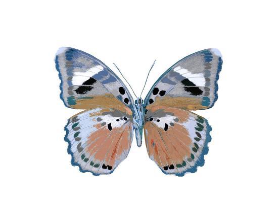 Butterfly in Pink II-Julia Bosco-Giclee Print