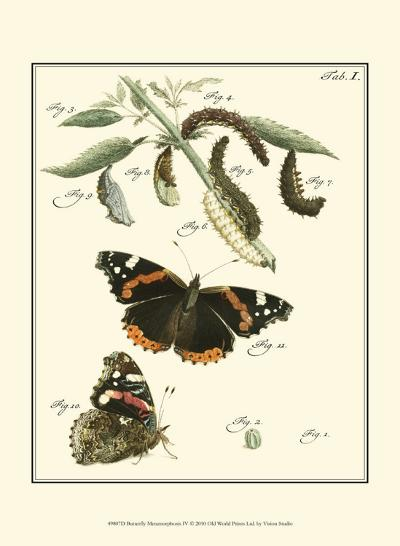 Butterfly Metamorphosis IV--Art Print