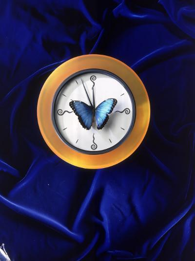 Butterfly on Top of Clock-Michelle Joyce-Photographic Print