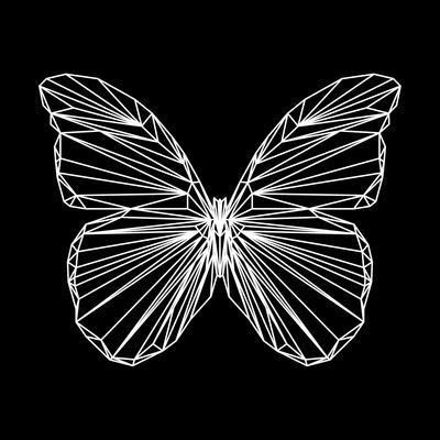 https://imgc.artprintimages.com/img/print/butterfly-polygon_u-l-pw4ed40.jpg?p=0