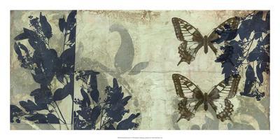 Butterfly Reverie I-Jennifer Goldberger-Premium Giclee Print