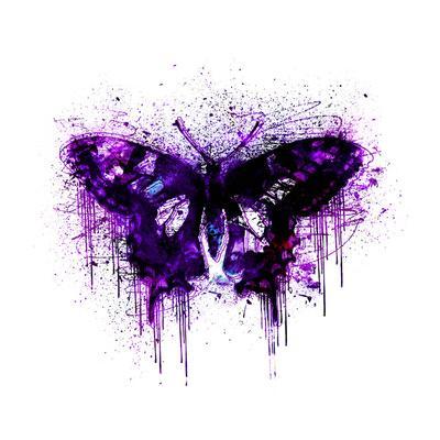 https://imgc.artprintimages.com/img/print/butterfly-square-4_u-l-f8y6h50.jpg?p=0