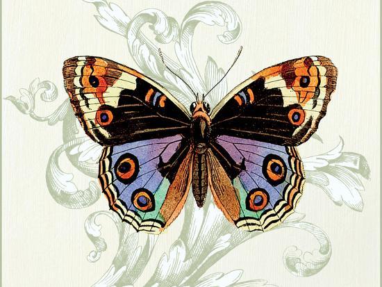 Butterfly Theme I-Susan Davies-Art Print