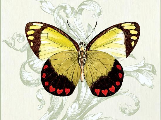 Butterfly Theme II-Susan Davies-Art Print