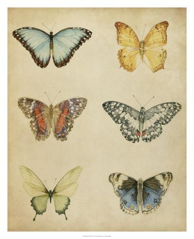 Butterfly Varietal I-Megan Meagher-Giclee Print