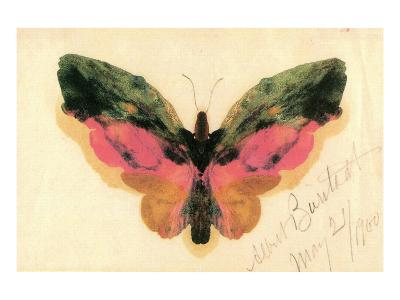 Butterfly-Albert Bierstadt-Premium Giclee Print