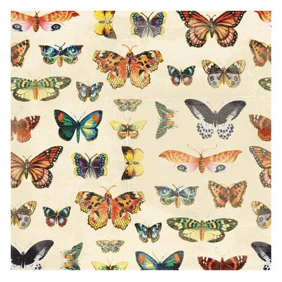 Butterfly-Jace Grey-Art Print