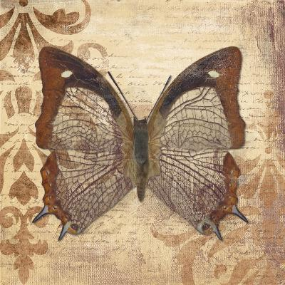 Butterfly-Patricia Pinto-Premium Giclee Print