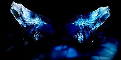 Butterfly-Alexandra Stanek-Photographic Print
