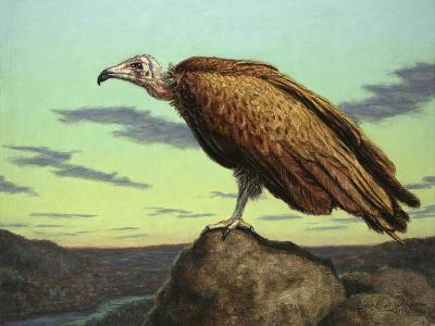 Buzzard Rock-James W. Johnson-Giclee Print