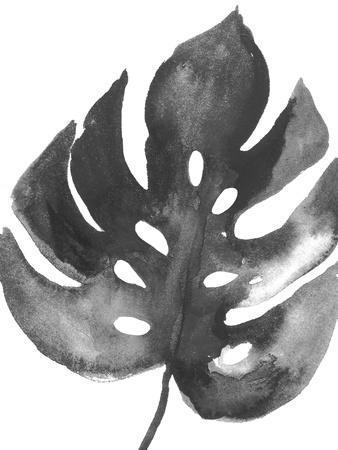 https://imgc.artprintimages.com/img/print/bw-palm-ii_u-l-q1b52gn0.jpg?p=0