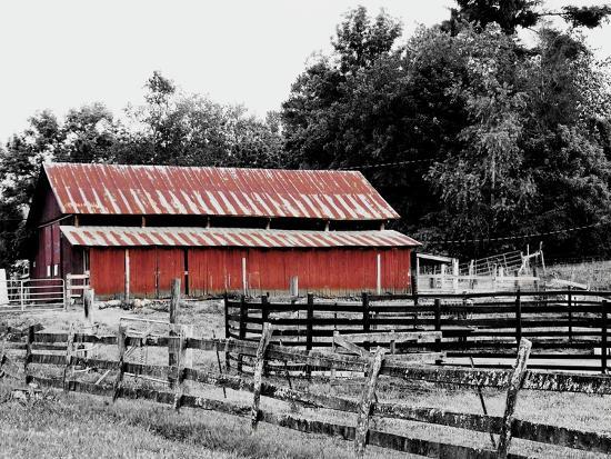 BW Rustic Barn-Gail Peck-Art Print