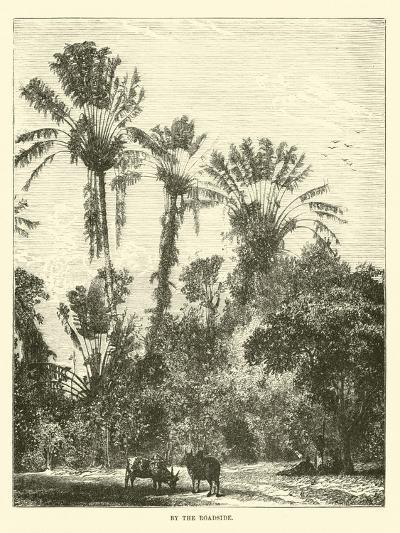 By the Roadside--Giclee Print