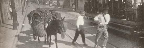 'By tram and mule', 1914-Unknown-Photographic Print
