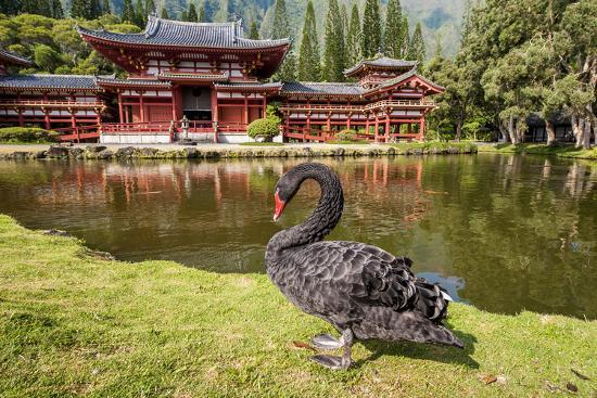 Byodo-In Temple, Valley of the Temples, Kaneohe, Oahu, Hawaii-Michael DeFreitas-Photographic Print