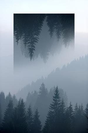 Dark Mountains Forest and Fog - Geometric Reflections Effect