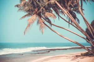Tropical Beach by byrdyak