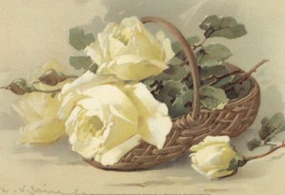 Corbeilles de Roses III