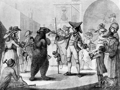 Dancing Bear, 1785