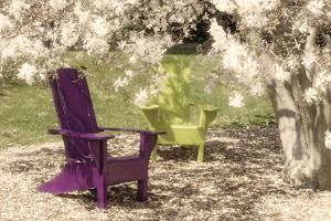 Under the Magnolia Tree by C. McNemar