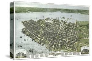 Bird's Eye View of the City of Charleston, South Carolina, 1872 by C.N. Drie