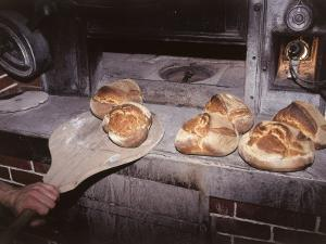 Close-Up of a Person's Hand Baking Bread by C. Sappa
