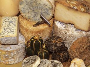Close-Up of Various Types of Cheese by C. Sappa